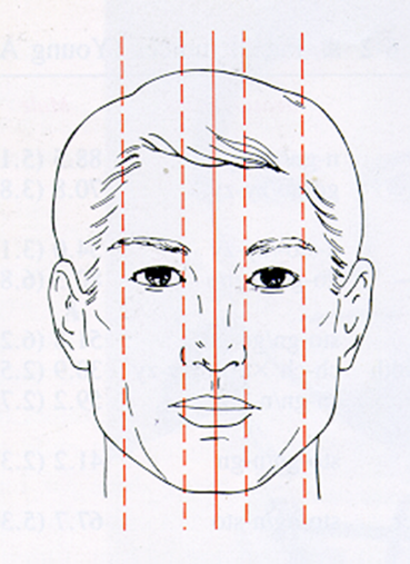 OrthoED - Evaluation of the face 9